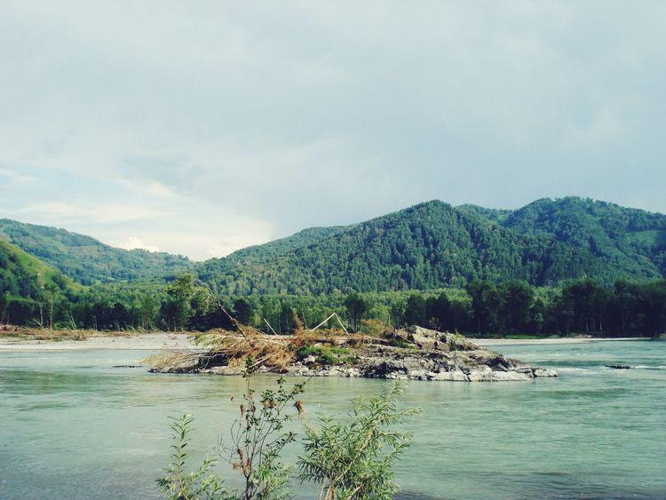 Nuture River Summer Russia ГорныйАлтай 🐳🌲🌳🗻