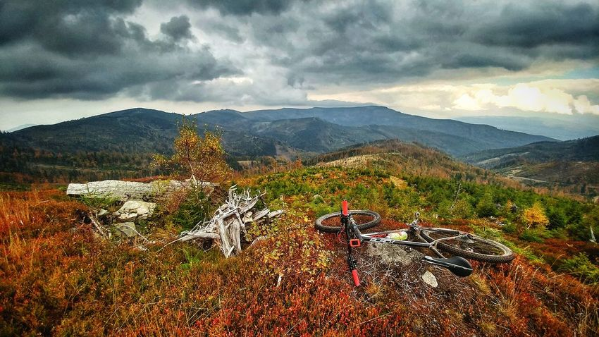 Mountain Mountain Range Cloud - Sky Landscape Mountain Peak Nature Scenics Outdoors Sky Tree Sunset No People Beauty In Nature Day Galaxy LGG5 Lg G5 Lgg5camera Autumn Focusbikes Mtbpassion LG G5 Photography MTB MTB Biking Lgg5photography