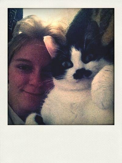 Cat Love Hello World Mustache
