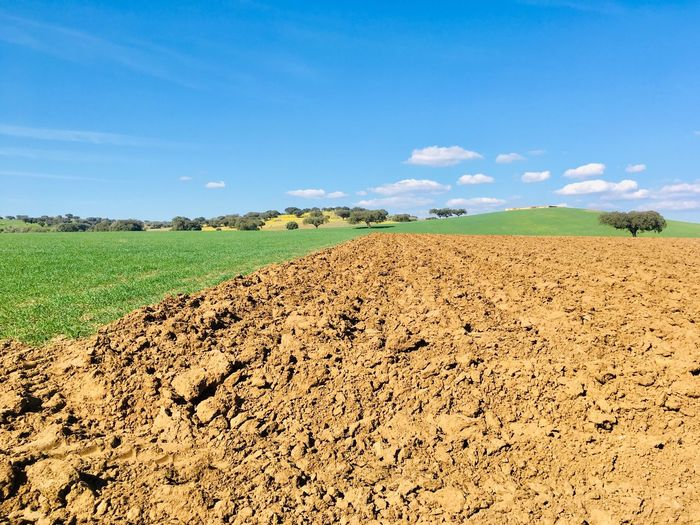 Plowed field at south of Portugal Alentejo,Portugal Plowed Field Landscape Sky Land Environment Field Tranquil Scene Tranquility Scenics - Nature Agriculture Rural Scene Cloud - Sky Nature