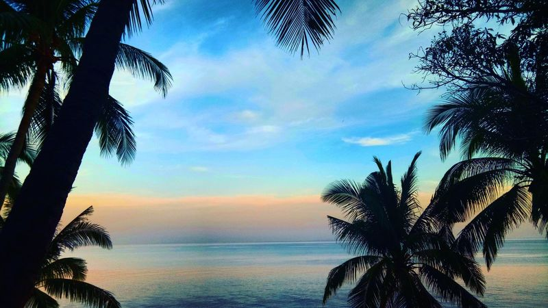 Sky Sunset Tree Silhouette Sea No People Water Cloud - Sky Beach Nature Outdoors Beauty In Nature Day ocean colors Beauty Nature Travel philippimes batangas