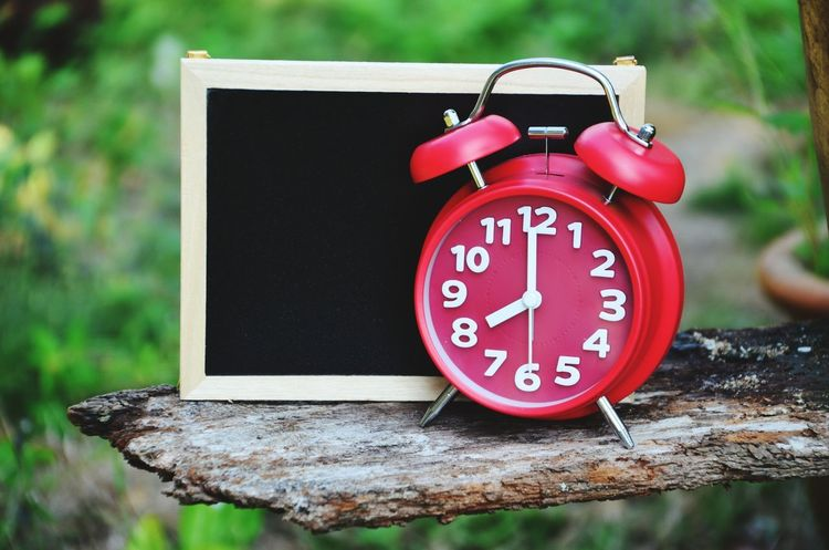 8 A.m. 8 Am Red Clock Garden Chalkboard Blackboard  Text Blank Morning Good Morning Message Sunrise Garden Clock Face Minute Hand Clock Time Red Alarm Clock Hour Hand Close-up Instrument Of Time Wall Clock Roman Numeral Clock Hand Hourglass Number
