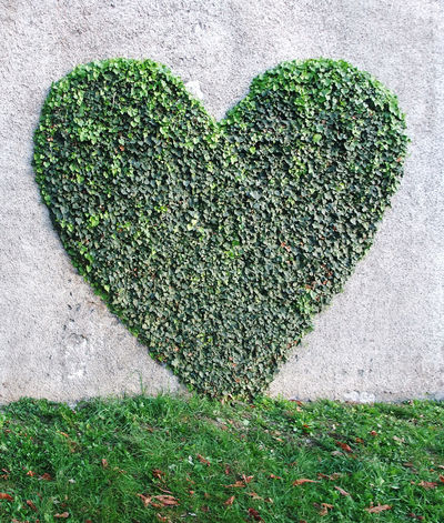 Feel Good Good Feeling Graffiti Heart Heart ❤ Hearts Herz Herz ❤ Herzen Liebe Liebe ❤ Love Love ♥ Loveable Loveheart Lovehearts Lovely Sign Signs First Eyeem Photo