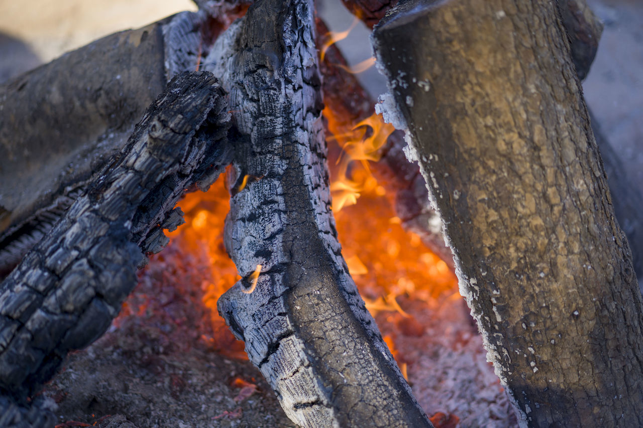 heat - temperature, burning, fire - natural phenomenon, wood - material, log, fire, close-up, wood, tree, nature, no people, focus on foreground, day, firewood, flame, outdoors, orange color, burnt, trunk, tree trunk
