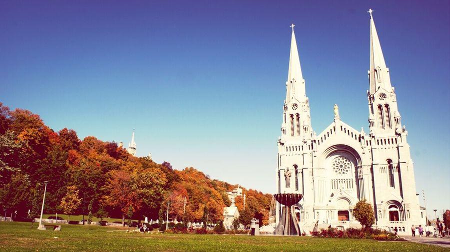 Basilic Autumn Landscape_Collection Photography