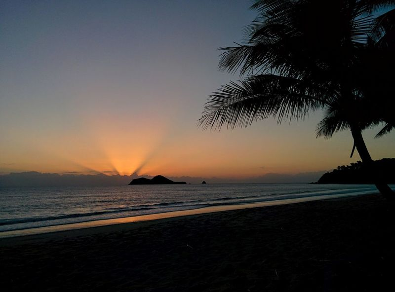 Wake Up World Beach Sea Sunrise Silhouette Horizon Over Water No People Beauty In Nature Palm Tree