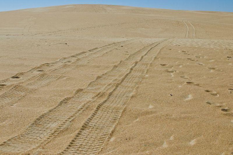 Tire tracks on sand dune