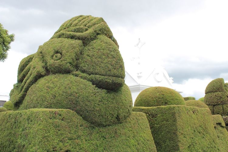 Bird Sculpture Beauty In Nature Bird Close-up Cloud - Sky Day Green Color Growth Low Angle View Nature No People Outdoors Plant Sculpture Sculpture Sky Statue Topiary Tree