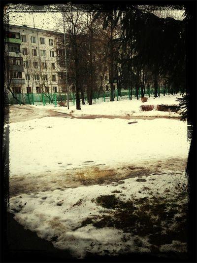 Bye my dear lovely winter Winter