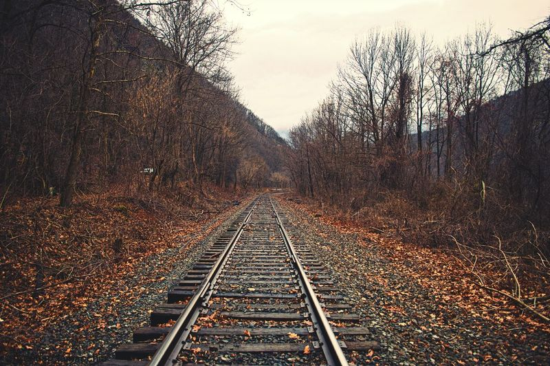 Railroad tracks in winter
