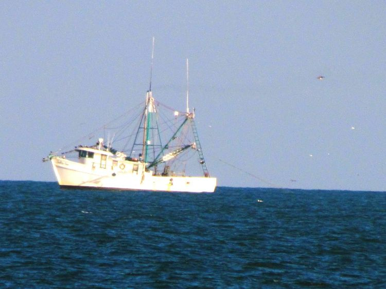 Nautical Vessel Sea Sailing Shrimp Boat Shrimp Fishing Ocean Ocean Waves Horizon Over Water Lifestyles Boat Ride Water Transportation Clear Sky Outdoors Sailing Ship Day No People Tall Ship Nature Mast Sky