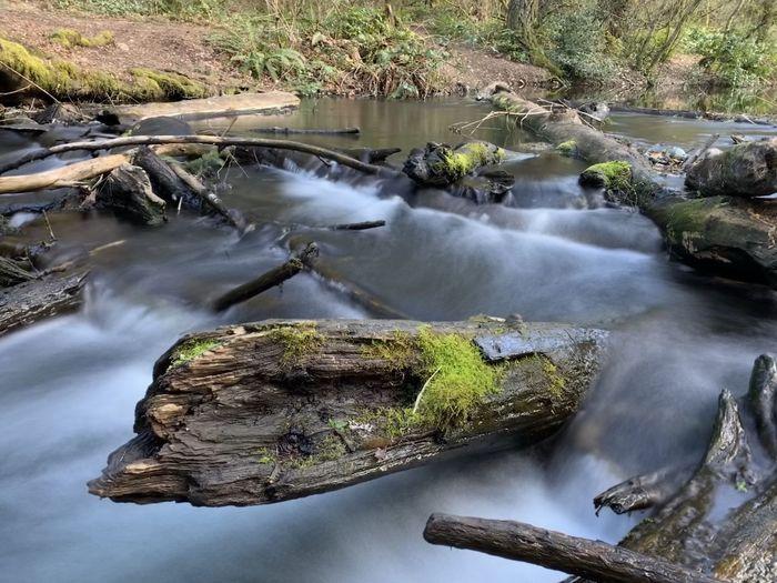Water Long