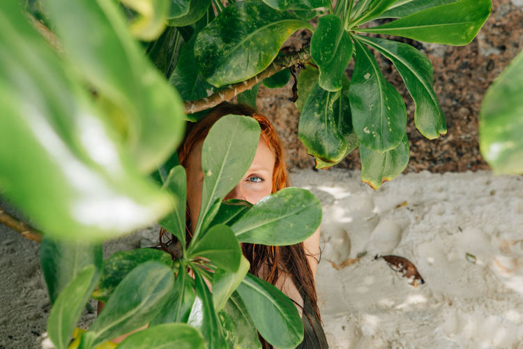 girl you look like you're made of sunshine. ✨ #islandlife #bohol #panglao #philippines #canon #wethecreators #vsco #vscocam Anda, Bohol Blue Eyes Bohol Bohol Philippines Redhead Beach Beauty In Nature Eyes Face Green Color Leaf Nature One Woman Only Outdoors Plant Plants Collection Sand Tree Young Women