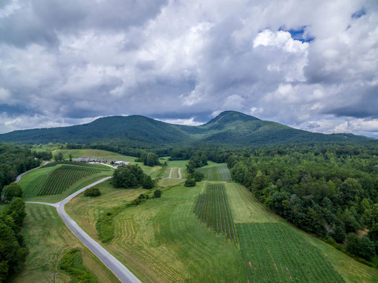 Yonah Mountain & Vineyard Beauty In Nature Cloud Cloud - Sky Cloudy Country Road Day Field Grass Green Color Hill Idyllic Landscape Mountain Mountain Range Nature Non-urban Scene Outdoors Remote Road Rural Scene Scenics Sky The Way Forward Tranquil Scene Tranquility