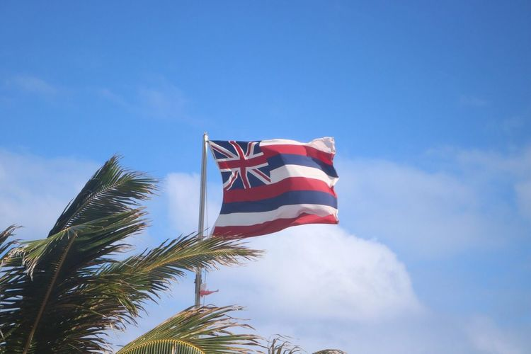Hawaii flag Flag Low Angle View Patriotism Blue Day Sky No People Striped Outdoors Stars And Stripes Tree Close-up