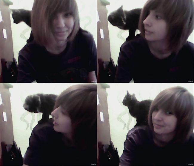 Cute Pets котизм Cat♡
