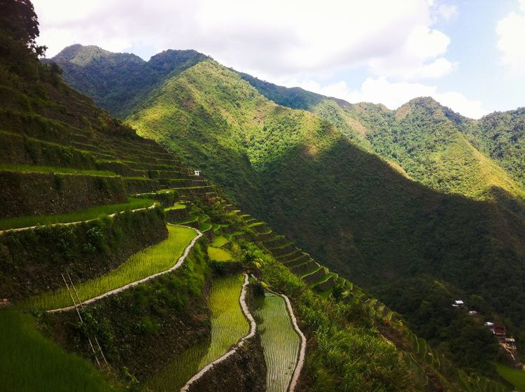 Banaue Green Color Landscape Mountain Nature Outdoors Philippines Rice Terraces