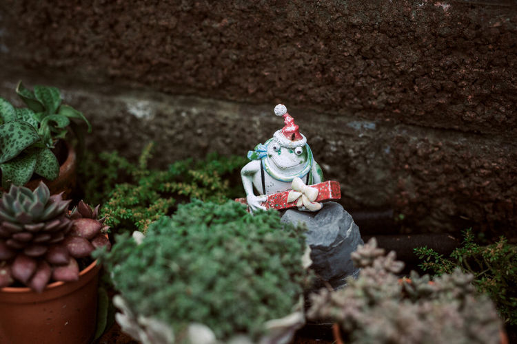 High angle view of statue by potted plants