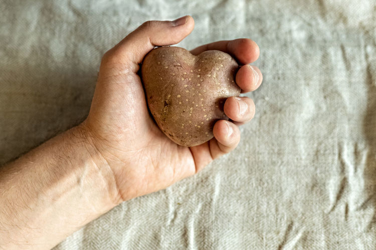 Cropped hand holding heart shape