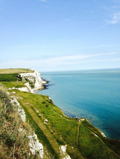 Whitecliffs 2015 Whitecliff