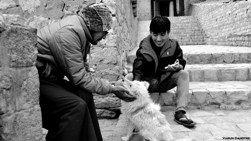 Pet Love! The Moment - 2015 EyeEm Awards The Great Outdoors - 2015 EyeEm Awards Eyeem Best Shot Check This Out People Hello World Black & White Black And White Pets Pet The Great Outdoors - 2016 EyeEm Awards The Photojournalist - 2016 EyeEm Awards The Street Photographer - 2016 EyeEm Awards