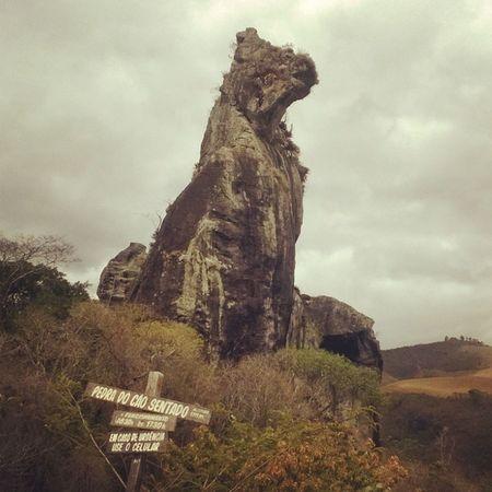 Andanças: Pedra do Cão Sentado Novafriburgo Errejota  Brasilgram Nature Photography EyeEm Nature Lover Rock Formation