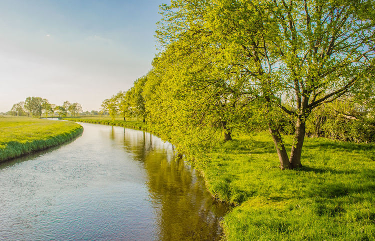 Blue Sky Bremen Dike Germany Green In Bloom Landscape Niedersachsen River Spring Springtime Sunny Sunny Day