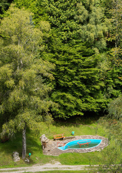 Murgtal Treading Water Beauty In Nature Blackforest Day Forest Lake Lush Foliage Nature Nautical Vessel No People Outdoors Plant Scenics Tranquil Scene Tranquility Transportation Tree Water Weisenbach