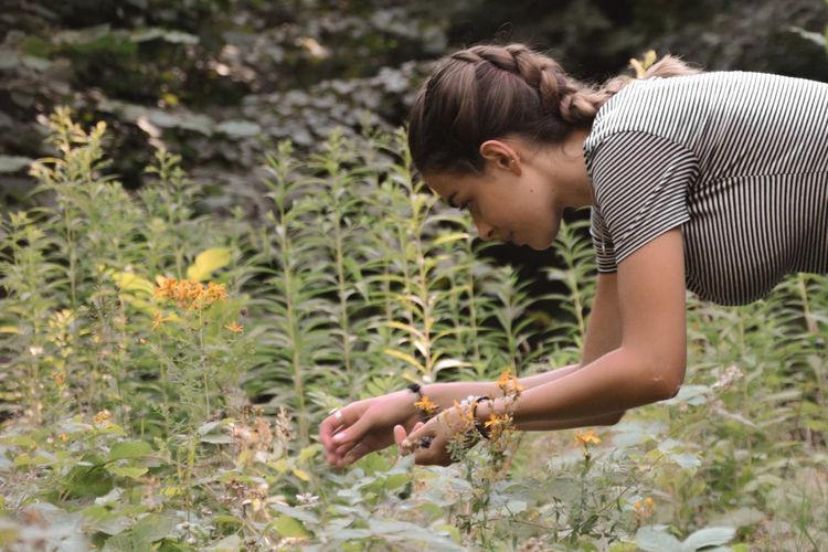 Profile of young woman picks ripe raspberries