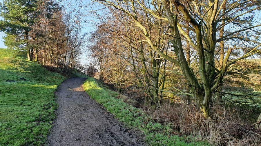 muddy rural