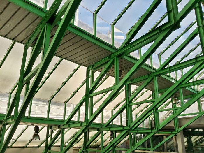 Showcase March Udine Italy Travel Photography Travel Traveling Mobile Photography Art Fineart Architecture Transparent Roofs Metallic Structures Green Mobile Editing