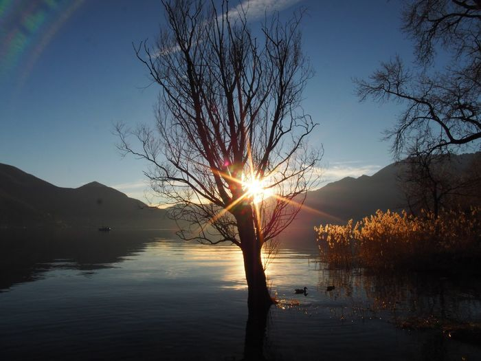 Beauty In Nature Day Lake Landscape Mountain Nature No People Outdoors Reflection Scenics Sky Sun Sunset Tranquility Tree Water