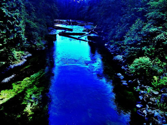 River EyeEm Nature Lover Dam Pacific Northwest