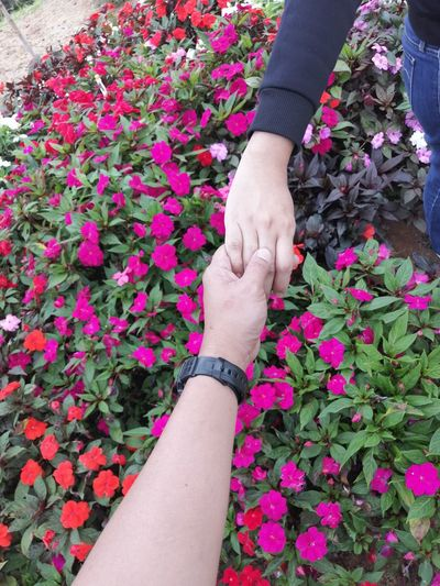Midsection of people holding hands over pink flowers outdoors