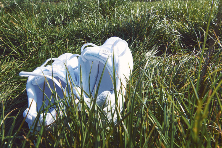 Extinction Rebellion - London 2019 Extinction Rebellion Protest Protesters London Plant Grass Growth Field Land Nature Green Color Day No People Outdoors Sunlight Beauty In Nature White Color Close-up High Angle View Tranquility Green Selective Focus Freshness Shoe