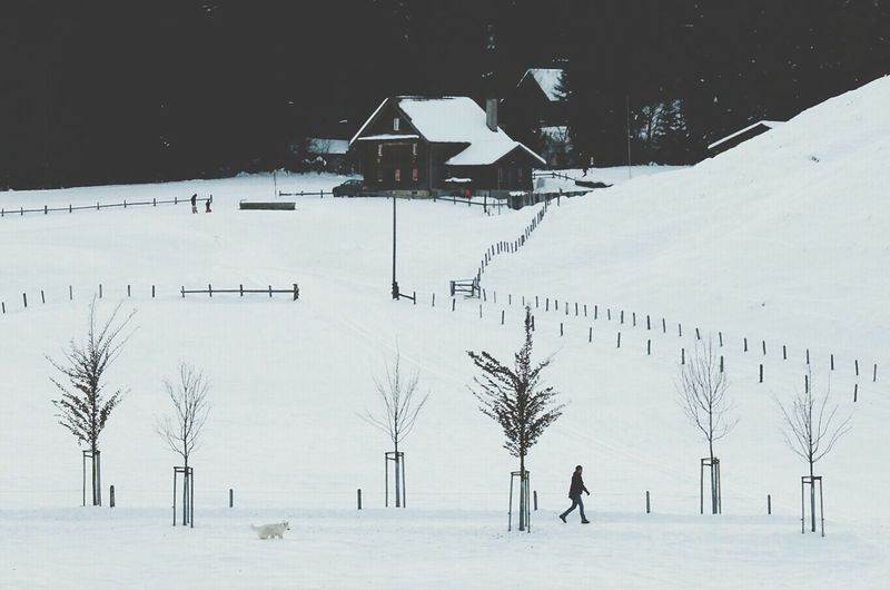 Winter Snow Grodstubli