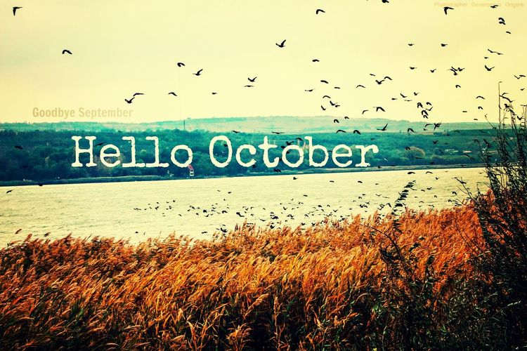 Hello October Goodbye September Goodbye Summer♥