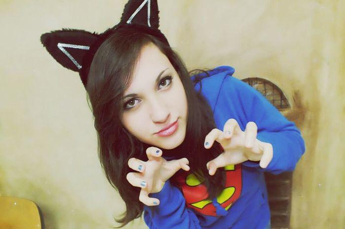 aw*^* Arr Miao:3 Gattina Duci Carnevale A Scuola