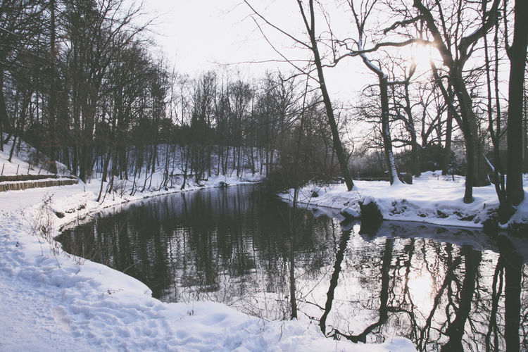 Alster Bare Tree Beauty In Nature Branch Cold Cold Temperature Day Frost Frozen Ice Landscape Nature No People Outdoors River Scenics Sky Snow Snowdrift Tranquil Scene Tranquility Tree Water Weather Winter