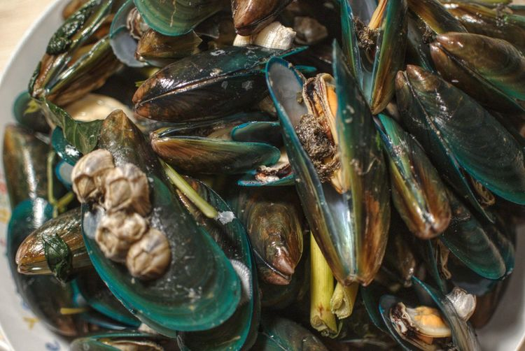 Mussel Animal Seafood Food And Drink Food Animal Wildlife No People Animal Themes Mussel Still Life Large Group Of Objects Abundance
