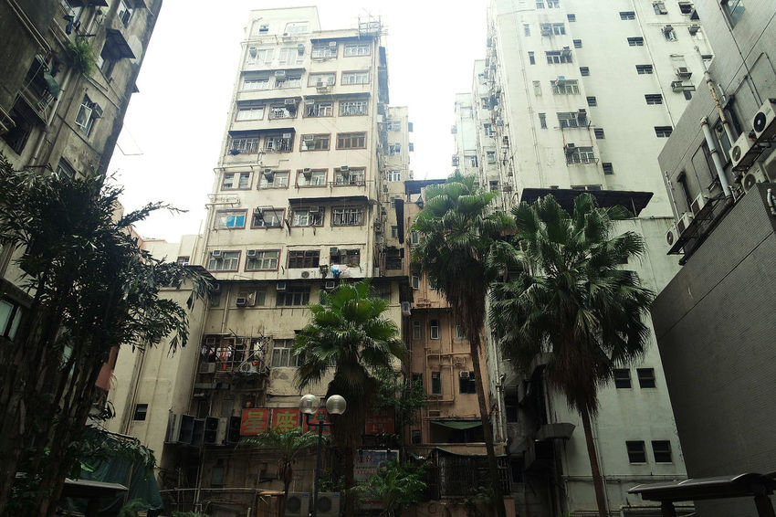 Architecture Balcony Building Exterior Built Structure China City HongKong Low Angle View No People Outdoors Palmtree Sky Streets Tree