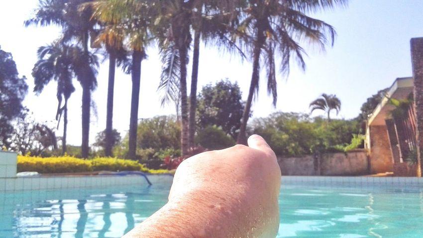 Dia de piscina! Water Natute Relaxing Coqueiros That's Me Sky Sun Garden Piscina Enjoying Life Live For The Story