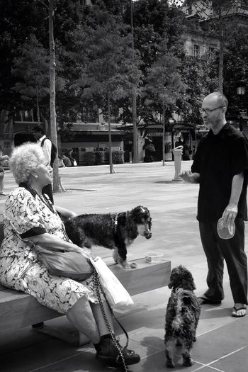 Meeting point. IPhoneography Streetphotography Blackandwhite Street Life