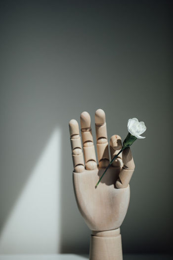 Close-up of hand holding white flowers on table