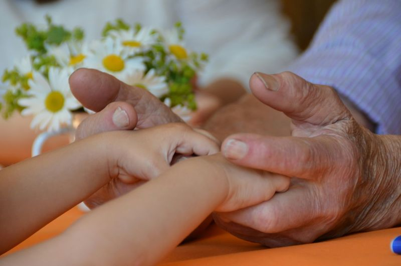 Tow People Generations Family Muttertag Outdoor Childhand Flowers Generation Old And Jung Human Hand Togetherness Men Hand Close-up Finger Grandchild Family Bonds