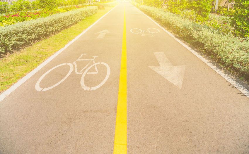 Bicycle sign, Bicycle Lane in public park. Arrow Symbol Communication Day Direction Dividing Line Grass Guidance Marking Nature No People Outdoors Plant Road Road Marking Sign Sunlight Symbol Text The Way Forward Transportation Yellow