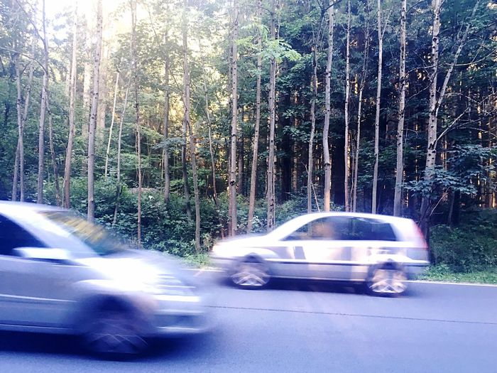 Traffic Bavaria Cars Street Street And Trees Traffic And Nature Movement