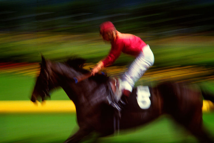 Racehorse and Jockey. Whoa nellie! Animal Animal Themes Blurred Motion Horseracing Jockey Motion Motion Blur One Animal Race Racecourse Racehorse Racetrack Racing Saddle Seattle, Washington Speed Thoroughbred Track