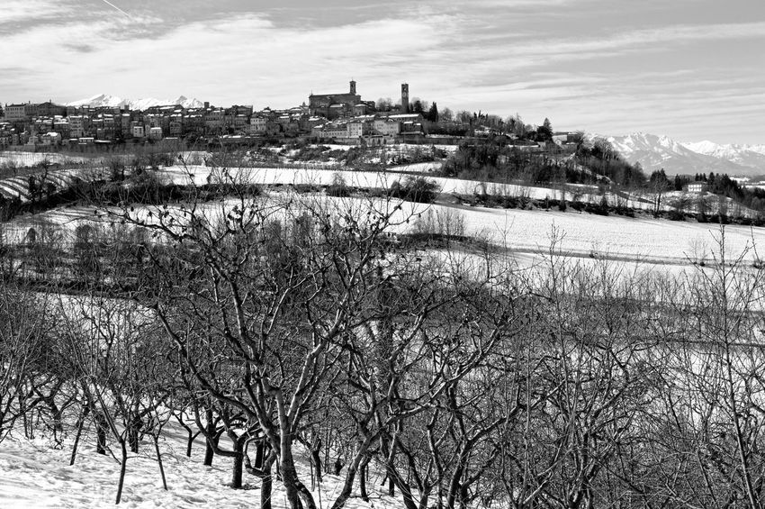 The stunning view of Mondovì from the street of Garzegna Blackandwhite Blackandwhite Photography Hills Italy🇮🇹 Landscape Mondovì Piedmont Winter Winter Trees Winterscapes