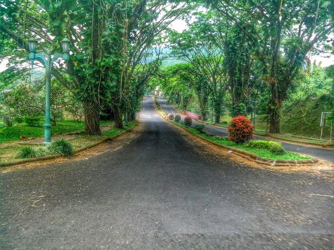 Street Streetphotography Tracks Path Asphalt EyeEm Best Shots Garden Road On The Road Ciater